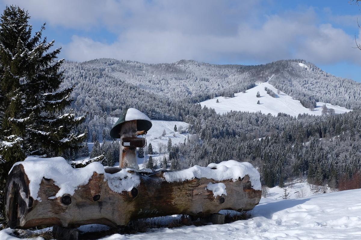bilder winterlandschaft kostenlos  vorlagen zum ausmalen