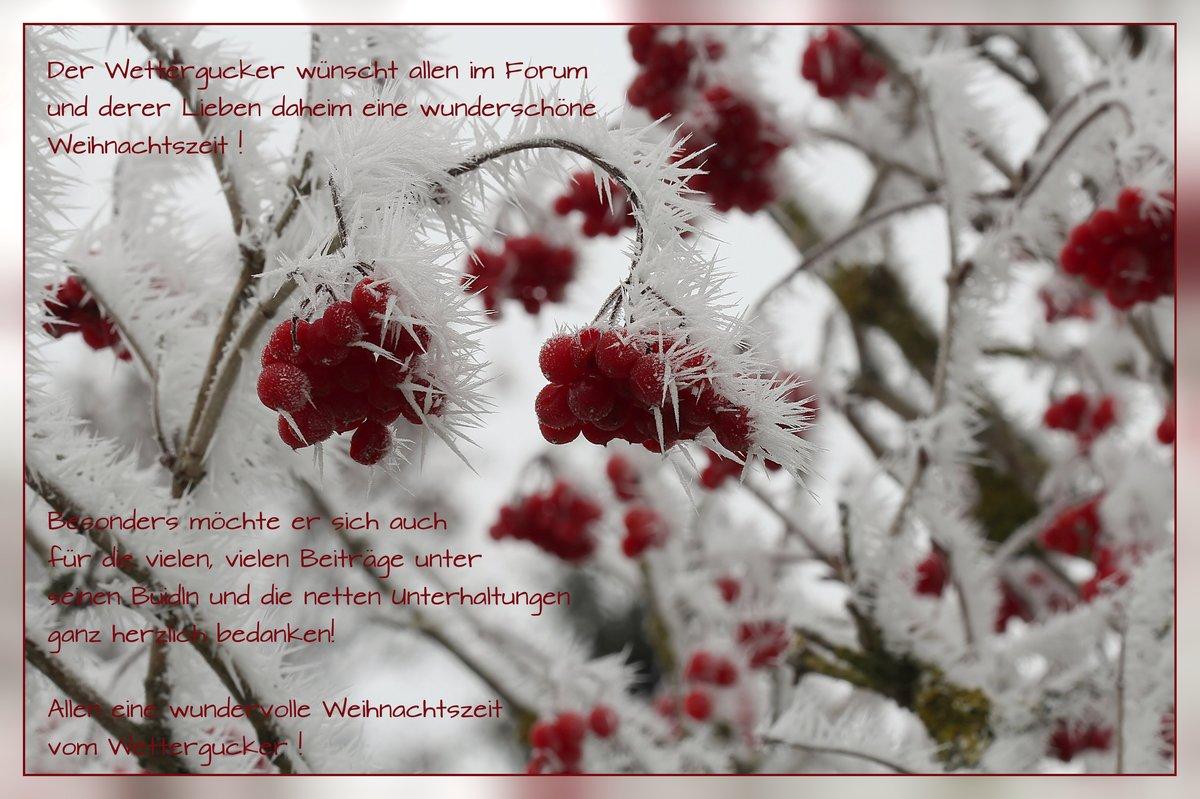 Herzliche Weihnachtswünsche.Herzliche Weihnachtsgrüße Fotocommunity To Die Klassische