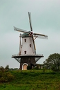 Windmühle in Veere